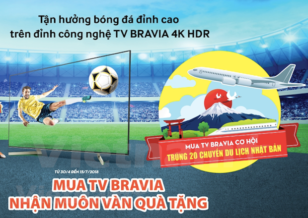 El mercado de televisores de Vietnam se calienta durante la Copa Mundial de Futbol hinh anh 1