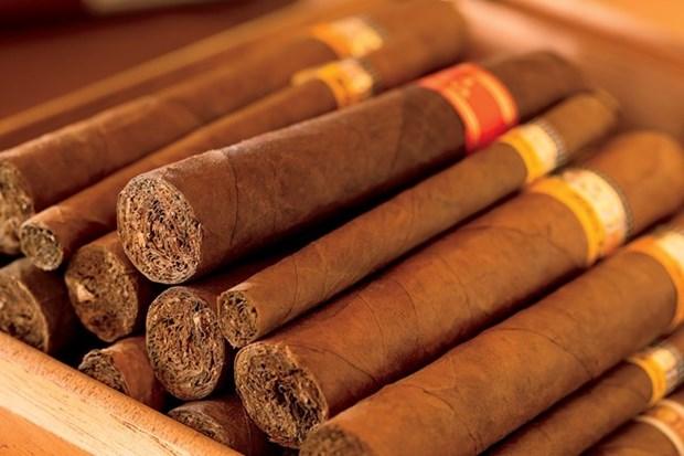 Vietnam refuerza lucha contra contrabando, transporte y comercio ilegal de cigarros hinh anh 1