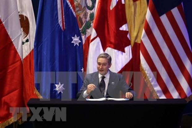 Gobierno de Canada presenta borrador de ley para ratificar el CPTPP hinh anh 1