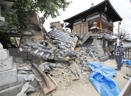 No reportan ninguna victima vietnamita en sismo en Japon hinh anh 1