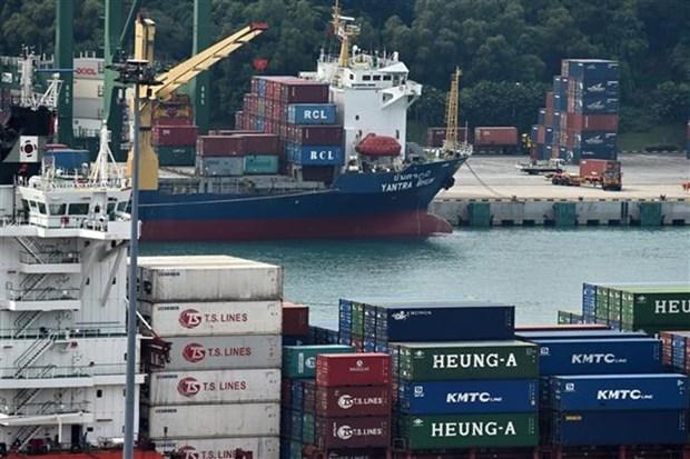 Crecen exportaciones no petroleas de Singapur en mayo hinh anh 1
