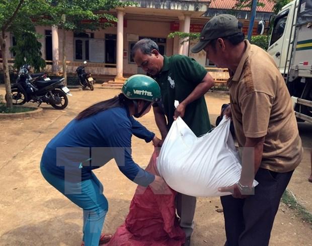 Vietnam aprueba programa de accion nacional para erradicar el hambre hinh anh 1