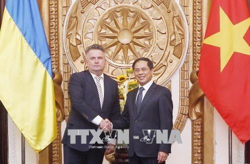 Vietnam y Ucrania realizan consulta politica a nivel de vicecanciller hinh anh 1