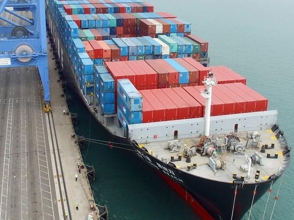 Exportaciones vietnamitas se dirigen a mercados de libre comercio hinh anh 1