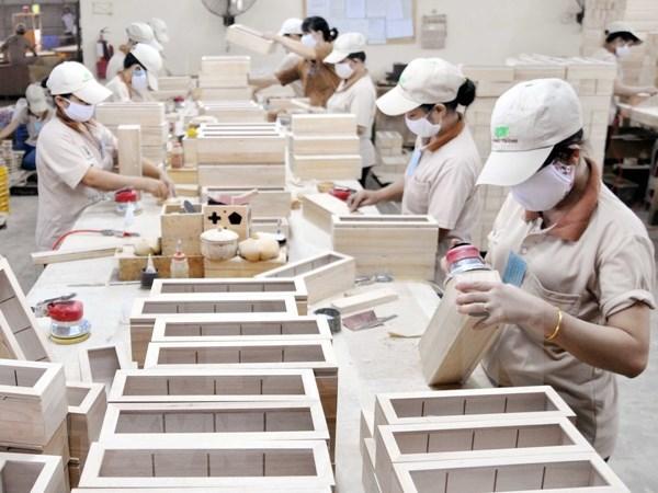 En alza exportaciones silvicolas en Vietnam en primer semestre hinh anh 1