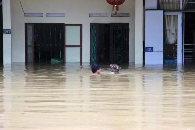 Premier de Vietnam insta a redoblar esfuerzos para mitigar efectos de inundaciones hinh anh 1