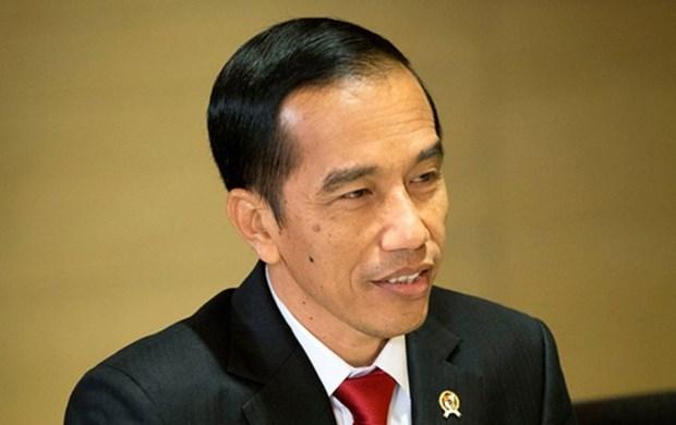 Indonesia y Japon por robustecer cooperacion hinh anh 1