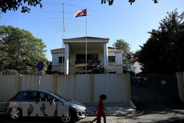 Primer Ministro de Malasia expresa disposicion a normalizar relaciones con Corea del Norte hinh anh 1