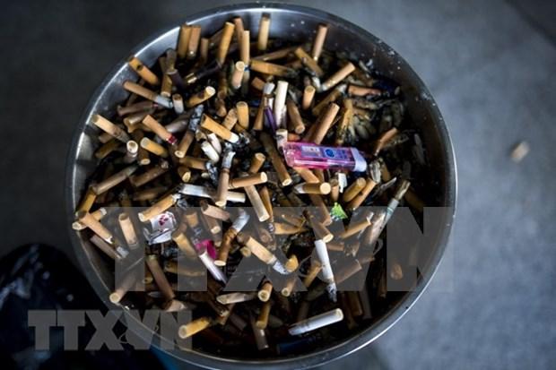 Vietnam coopera con organizaciones internacionales en lucha contra el tabaquismo hinh anh 1
