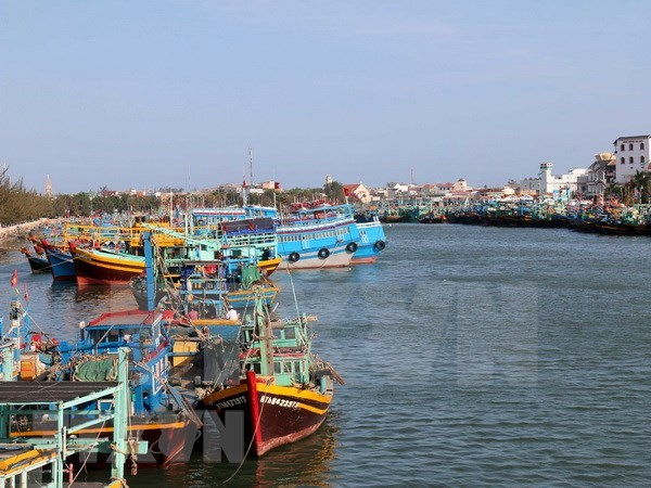Comision Europea reconoce esfuerzos de Vietnam contra pesca ilegal hinh anh 1