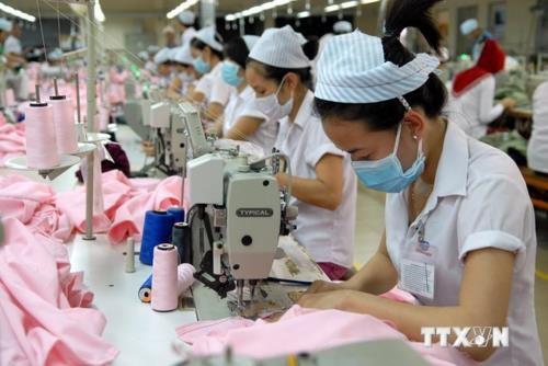 Casi 83 por ciento de empresas vietnamitas registran crecimiento estable en segundo trimestre hinh anh 1