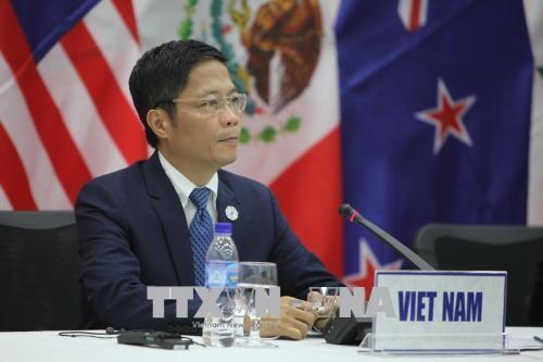 Vietnam y Japon reiteran compromiso con cooperacion en el marco de CPTPP hinh anh 1