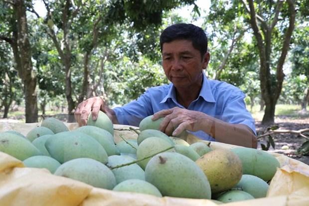 Vietnam convida a empresas suizas a invertir en agricultura hinh anh 1