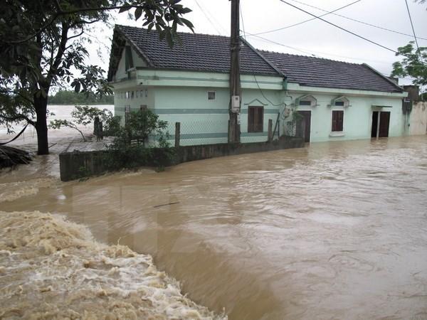 Provincias vietnamitas impulsan recuperacion en areas golpeadas por inundaciones hinh anh 1