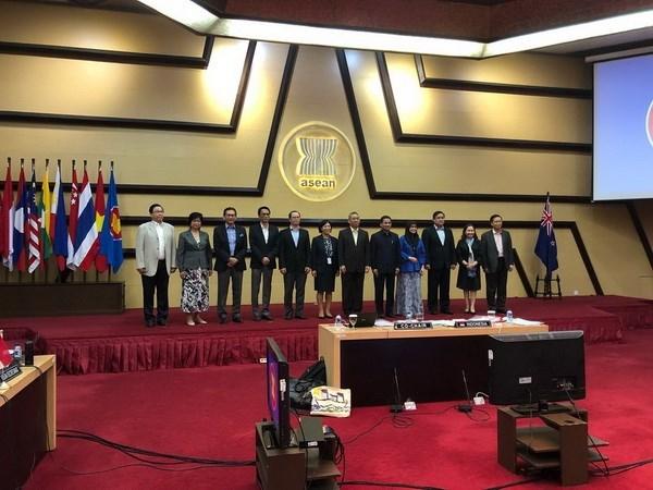 ASEAN y Nueva Zelanda revisan cooperacion en reunion del Comite bilateral hinh anh 1