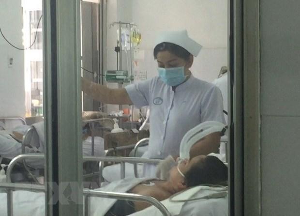 Virus AH1N1 cobro su primera victima en provincia vietnamita de Ben Tre hinh anh 1