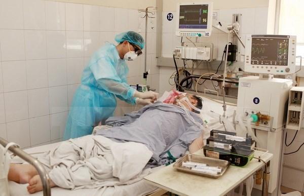 Reportan un fallecido por gripe aviar H1N1 en provincia survietnamita de Ca Mau hinh anh 1