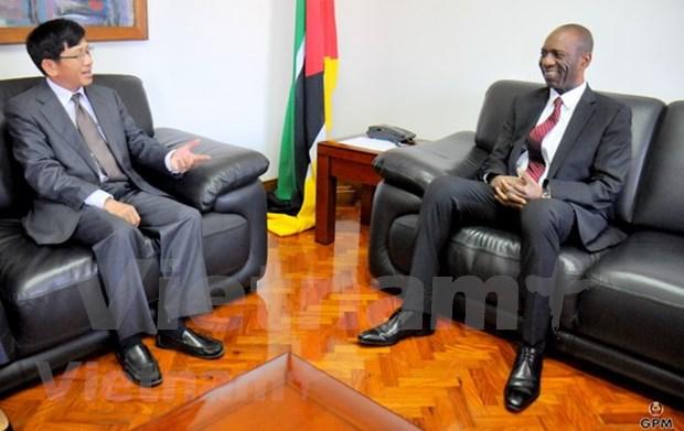 Mozambique aspira a recibir mas inversiones de Vietnam hinh anh 1