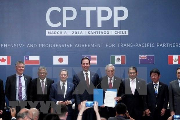 Japon finaliza procedimientos internos para la ratificacion del CPTPP hinh anh 1