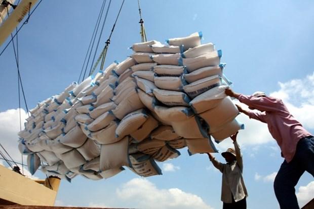 Alto aumento de exportaciones de arroz de Vietnam en primer semestre hinh anh 1