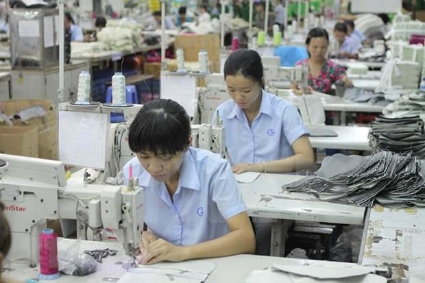 Sector de confecciones textiles de Vietnam: Oportunidades y tambien desafios hinh anh 1