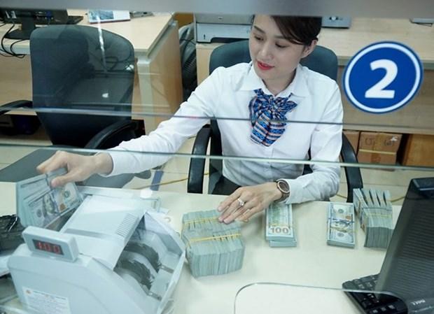 Banco Estatal de Vietnam dispuesto a adoptar medidas para estabilizar el mercado de divisa hinh anh 1