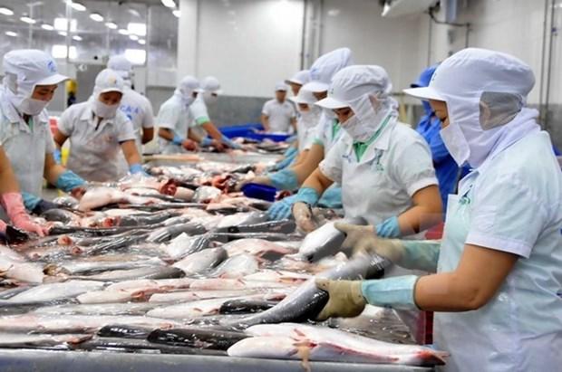 Evaluan de alcanzable meta vietnamita de ventas de productos acuaticos en 2018 hinh anh 1