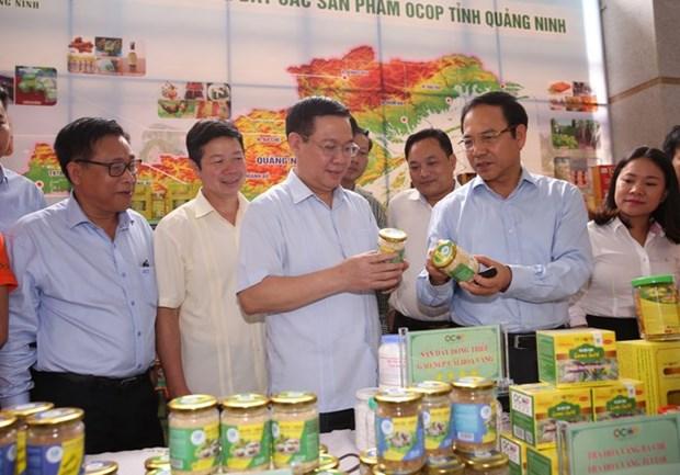 """Vicepremier vietnamita pide mas recursos para programa """"Cada comuna, un producto"""" hinh anh 1"""