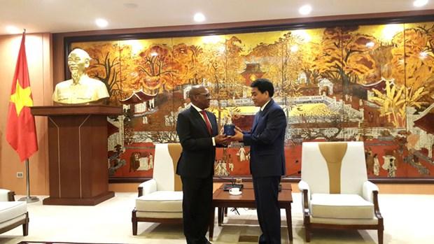 Hanoi y Sudafrica fortalecen vinculos hinh anh 1