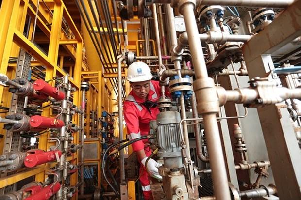 Grupo de petroleo de Vietnam sobrecumple metas en primer semestre hinh anh 1