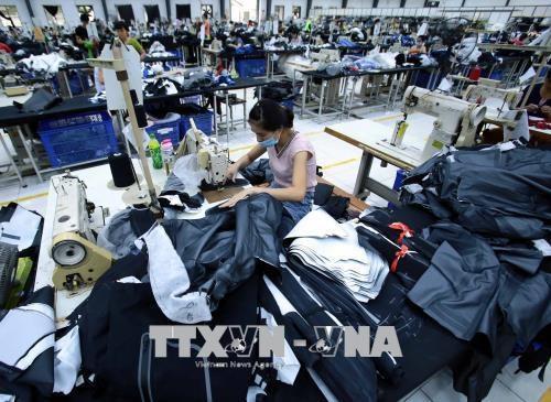 Vietnam y la India promueven cooperacion en rama textil hinh anh 1
