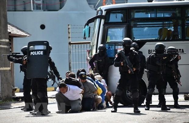 Mueren 11 extremistas en Indonesia mientras organos gubernamentales procedian a su detencion hinh anh 1
