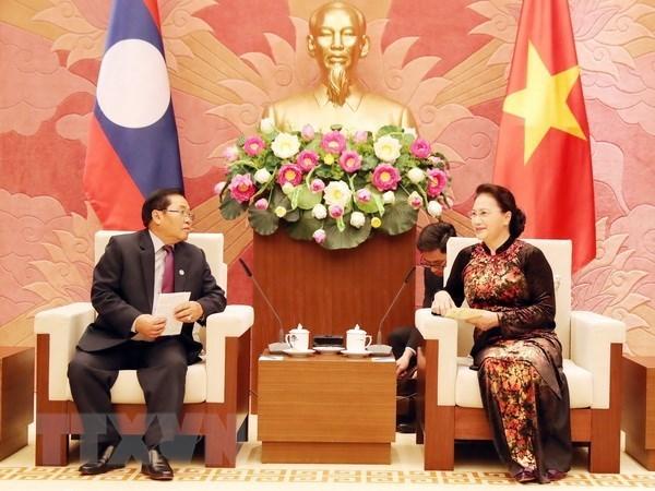 Vietnam y Laos robustecen cooperacion legislativa hinh anh 1