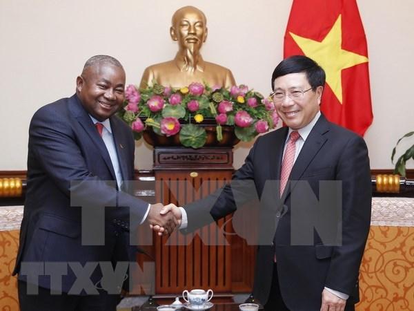 Vietnam concede importancia a lazos con Mozambique, afirma vicepremier hinh anh 1