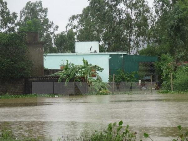 Vietnam lanza programa a favor de familias afectadas por inundaciones hinh anh 1