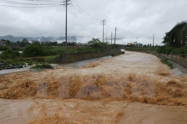 Vietnam se centra en superar consecuencias del tifon Son Tinh hinh anh 1