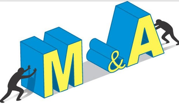 Potencial mercado M&A en Vietnam hinh anh 1