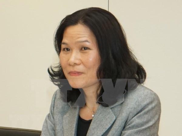 Embajadora vietnamita preside reunion de Comite de ASEAN en La Haya hinh anh 1