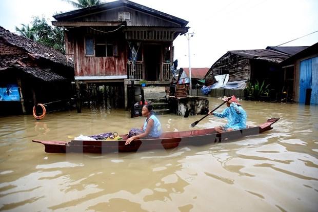 Myanmar: Decenas de miles de personas deben evacuar debido a inundaciones hinh anh 1