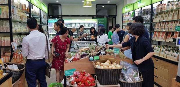 Huerta de compania vietnamita Organica recibe certificacion internacional hinh anh 1