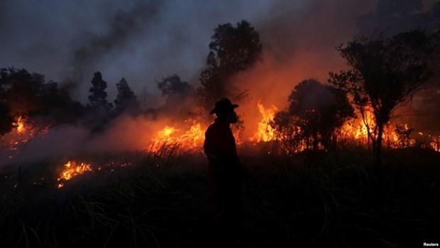 Detectan numerosos puntos de calor en Indonesia hinh anh 1