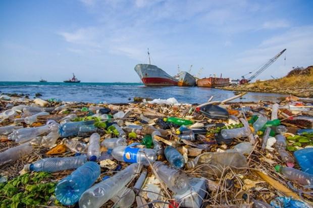 Vietnam: Jovenes de ciudad de Da Nang protegen oceano de desechos plasticos hinh anh 1