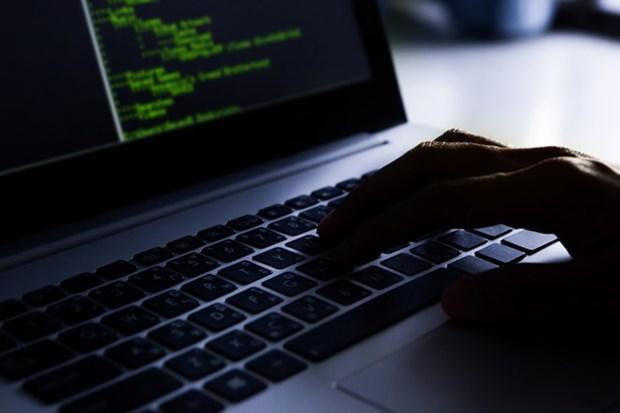Empresas de Viernam e Israel intensifican cooperacion en seguridad cibernetica hinh anh 1