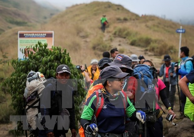 Indonesia: Evacuan a mas de mil personas atrapadas por terremoto hinh anh 1