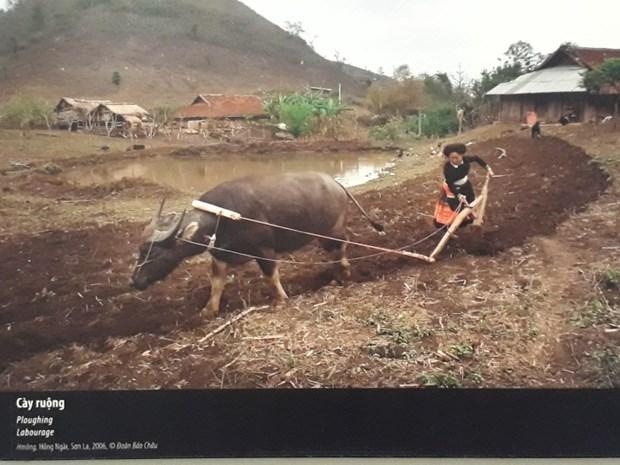 Las guerreras de Vietnam hinh anh 11