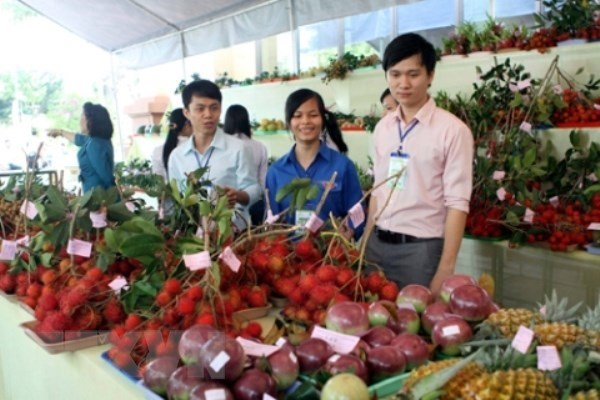 Empresas de Hanoi participaran en feria de frutas y vetegales en Hong Kong hinh anh 1
