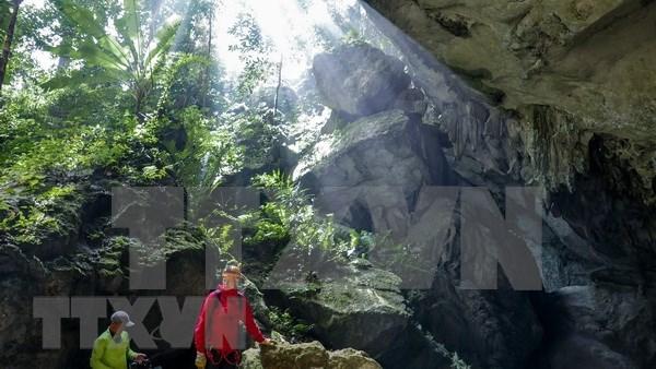 Descubren 44 nuevas cuevas en parque Phong Nha-Ke Bang en Vietnam hinh anh 1