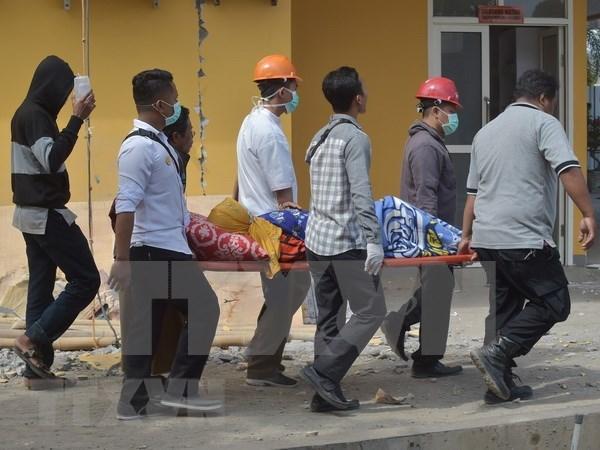 No hay victima vietnamita en terremoto en Indonesia, afirma embajada hinh anh 1