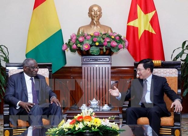 Vietnam y Guinea buscan ampliar la cooperacion bilateral hinh anh 1