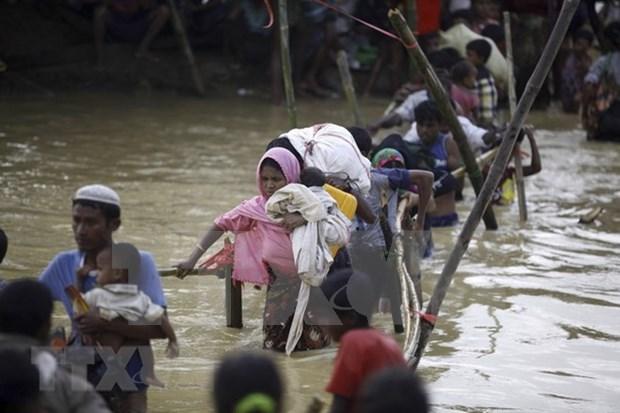 Japon y Myanmar debaten sobre crisis de los rohingyas hinh anh 1